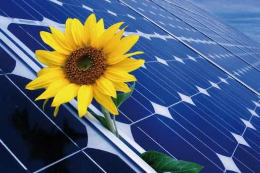 zonnepanelen milieu